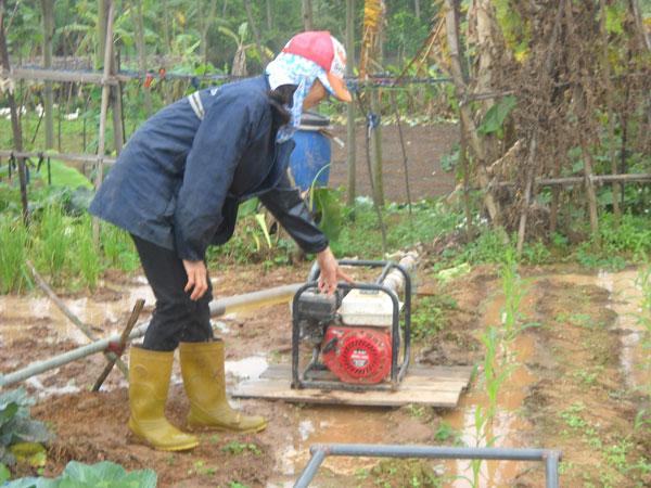 Máy bơm nước cho nông nghiệp và những điều cần biết