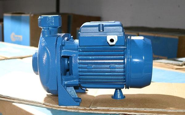 Tư vấn mua máy bơm nước Pentax tại Lào Cai